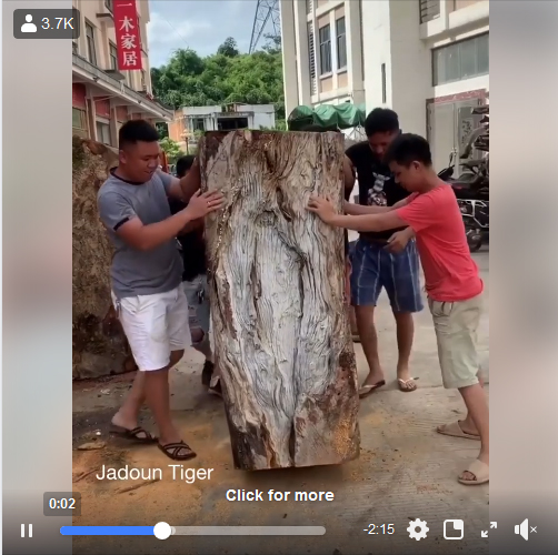 Woodcarving Art